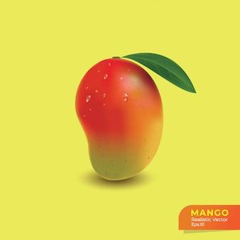 Realistische mango