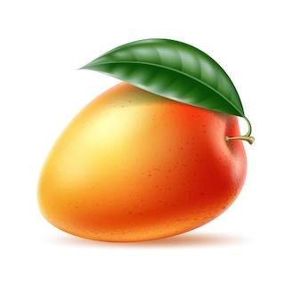Realistische reife mango mit grünem blatt