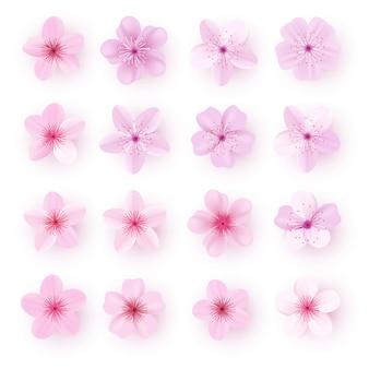 Realistische rosa kirschblüte-blumen eingestellt