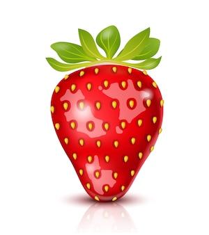 Realistische saftige erdbeere isoliert