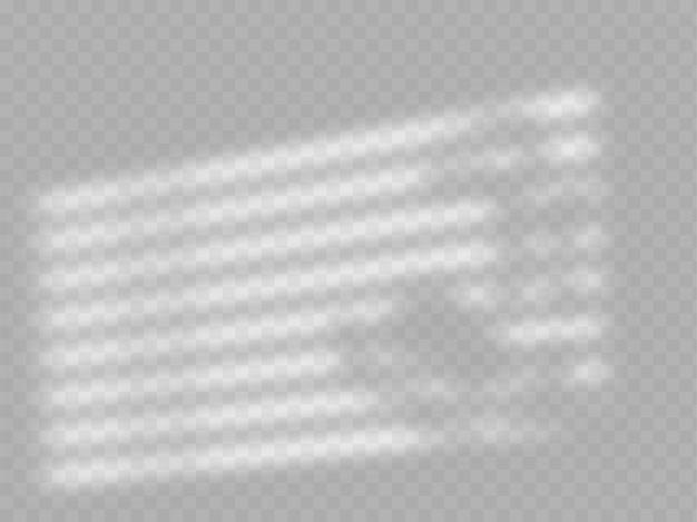 Realistische schatten-overlay-vorlage. fensterjalousie-schattenrahmen und baumzweig mit blättern, natürliches weiches innenlicht. schattenüberlagerungseffekt.