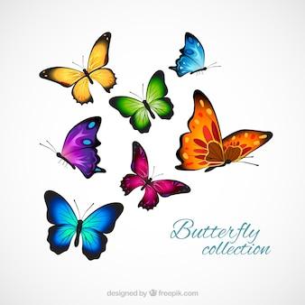 Realistische und bunte Schmetterlinge