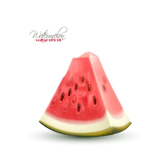 Realistische wassermelonenfrucht