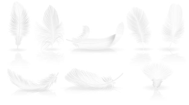 Realistische weiche weiße federn auf glänzendem hintergrund.
