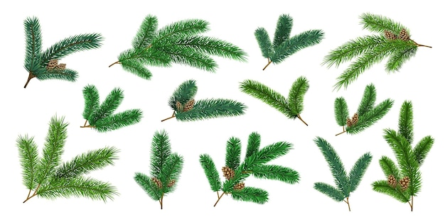 Realistische weihnachtsbaumzweige und tannenzweige mit tannenzapfen. immergrüne weihnachts-kiefer-dekorationsgirlanden. 3d-waldkiefernnadeln vektor-set