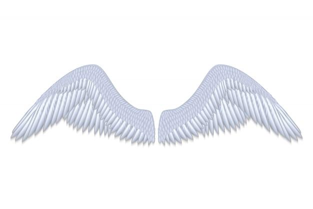 Realistische weiße engelsflügel lokalisierten vektorillustration
