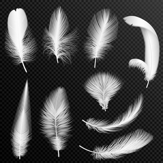 Realistische weiße federsammlung. satz flauschige federn, lokalisiert auf transparentem hintergrund