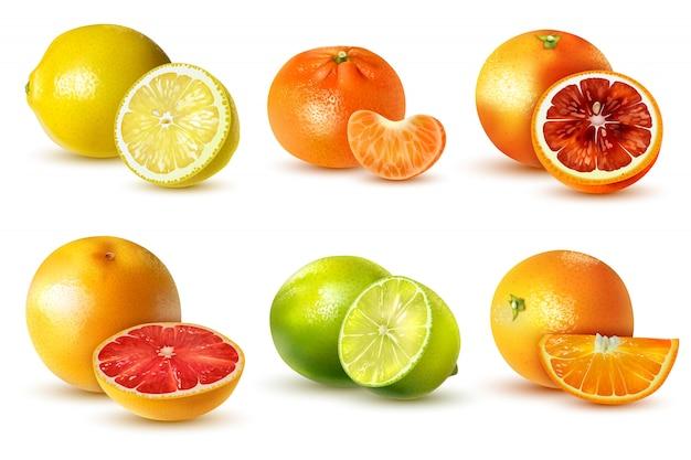 Realistische zitrusfrüchte mit zitronen-limetten-orangen-grapefruit-mandarine auf weiß isoliert