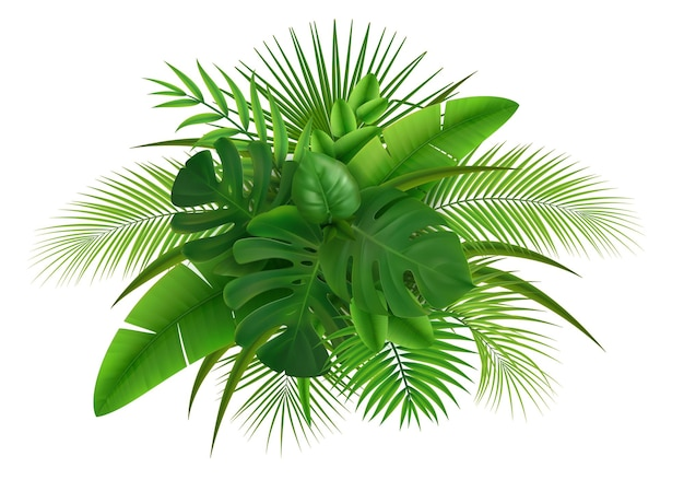 Realistische zusammensetzung mit grünen blättern verschiedener tropischer pflanzenillustration