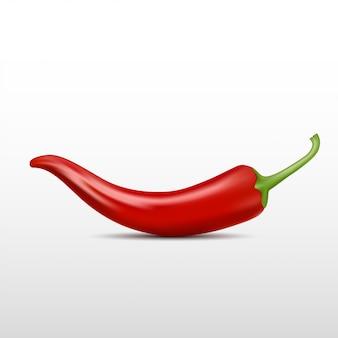 Realistischer chili-pfeffer