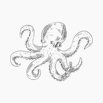Realistischer design-oktopus