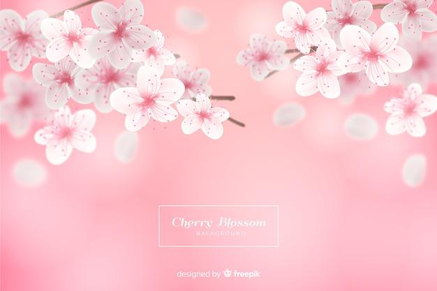 Realistischer kirschblütenhintergrund