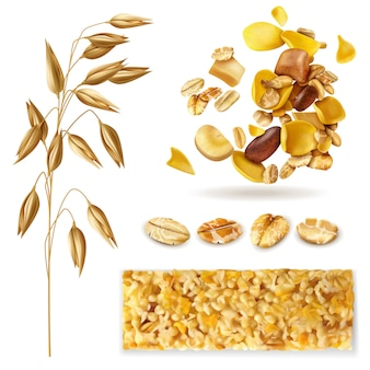Realistischer müslisatz lokalisierte bilder mit getreidepflanzenbohnen und bereiter frühstücksgranola mischen