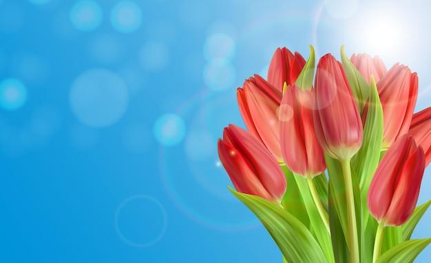 Realistischer natürlicher tulpenblumenhintergrund mit himmel.