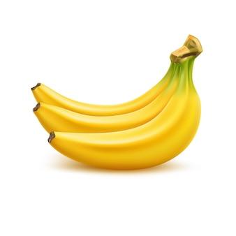 Realistischer reifer bananenstrauß frische gelbe frucht