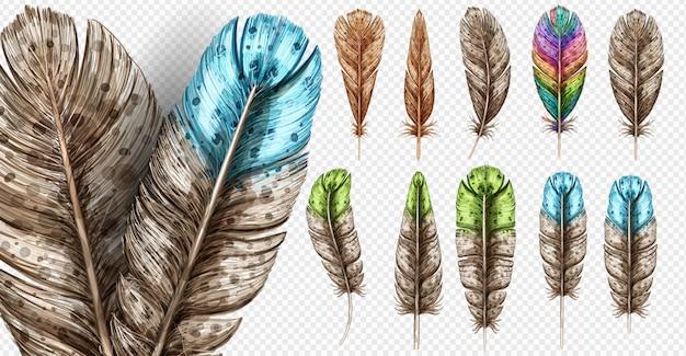 Realistischer satz mit kleiner und großer mehrfarbiger vogelfederillustration