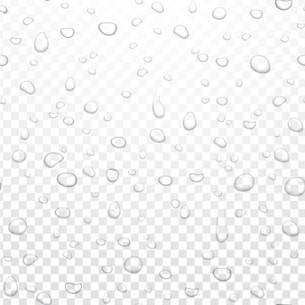 Realistischer wasserregen fällt auf alpha-transparentem hintergrund. kondensierte reine tröpfchen. klare wasserblasen auf fensterglas.