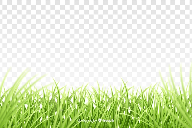 Realistisches design der grenze des grünen grases