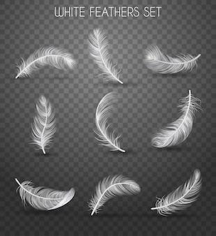 Realistisches federtransparentes set mit weißen federn setzt schlagzeilen, weiche und leichte konzeptillustration