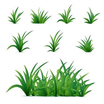 Realistisches frühlingsgrüngras lokalisiert auf weißem hintergrund. naturelemente für plakate oder werbung.