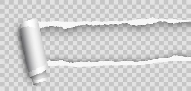 Realistisches leeres gekräuseltes tränenpapier. papierrand zerrissen. realistisches zerrissenes papier mit gerollter kante. zerrissenes papier