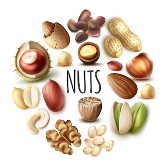 Realistisches nussrundkonzept mit muskatnuss-walnuss-mandel-haselnuss-kastanien-pistazien-cashew-kiefern-pekannuss-nüssen isoliert