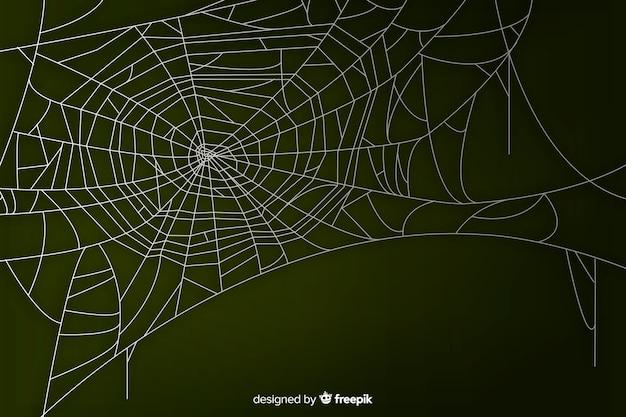 Realistisches spinnennetz mit steigung