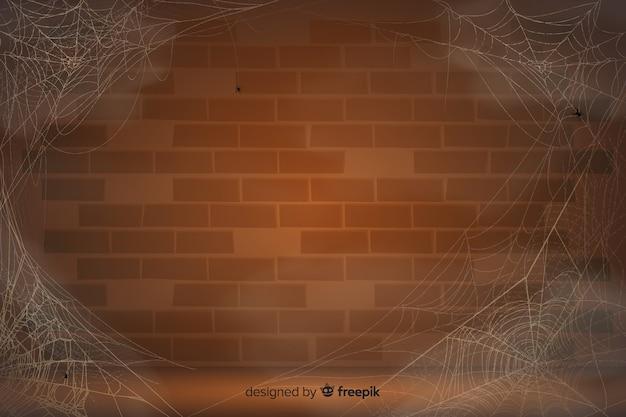 Realistisches spinnennetz mit weinlesewand