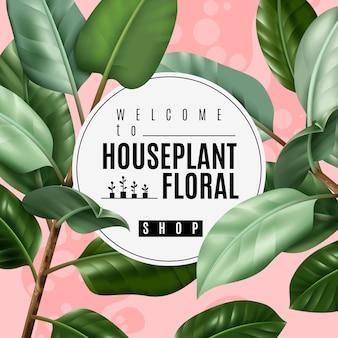 Realistisches zimmerpflanze-plakat