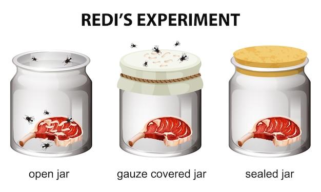 Redis experimentdiagramm für bildung