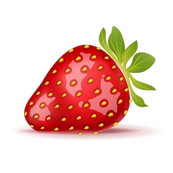 Reife erdbeere lokalisiert auf weiß.
