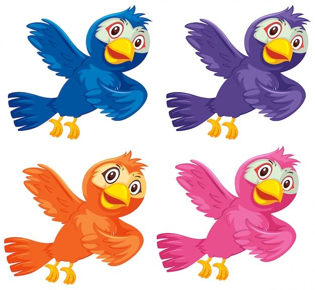 Reihe von bunten vögeln