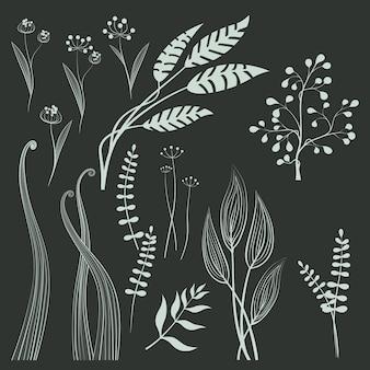 Reihe von gräsern