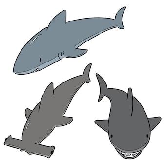 Reihe von haien