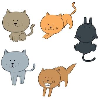Reihe von katzen