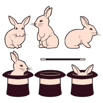 Reihe von niedlichen weißen kaninchen und zylinder magische leistung