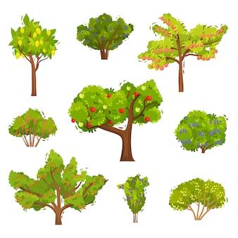 Reihe von obstbäumen und beerenbüschen. landwirtschaftliche pflanzen. elemente für ein buch über gartenarbeit