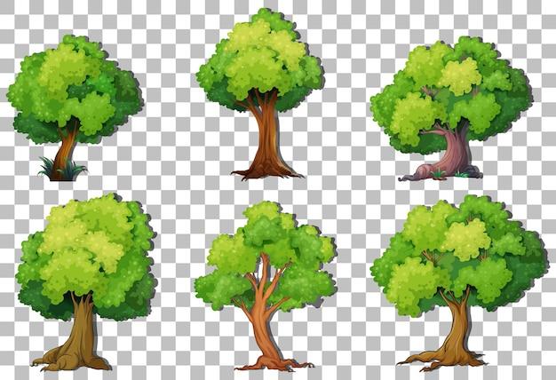 Reihe von sortenbäumen auf transparentem hintergrund