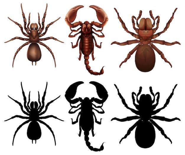 Reihe von verschiedenen bugs