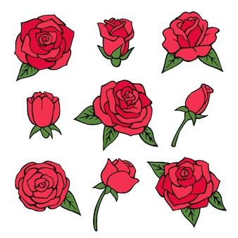 Reihe von verschiedenen rosen