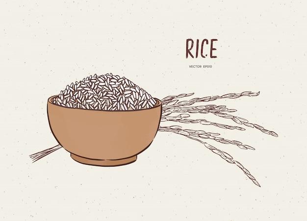 Reis in der schüssel mit reiszweig, skizzenvektor.
