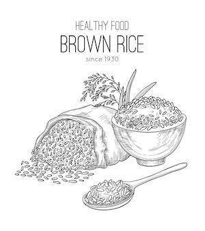 Reishand gezeichnet. landwirtschaftlicher hintergrund mit sackkörnern weizen gesunde natürliche bio-lebensmittel weißer reispflanzen vektor. illustrationsreis im sack, getreidesamen-skizze