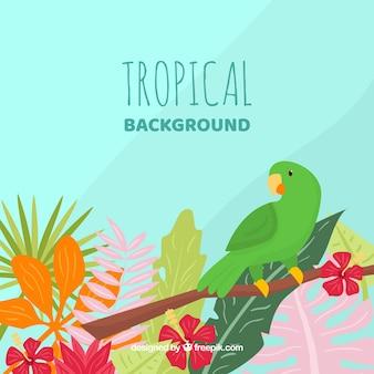 Reizende hand gezeichneter tropischer hintergrund