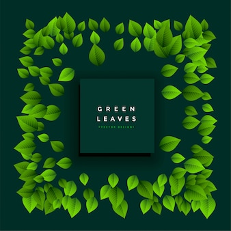 Reizendes grün lässt feld mit textplatz