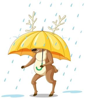 Rentier trägt einen regenschirm isoliert auf weißem hintergrund