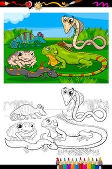 Reptilien und amphibien malbuch