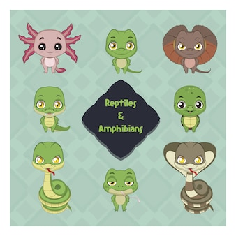 Reptilien und amphibien sammlung