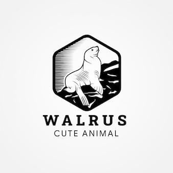 Retro-karikatur-strichzeichnungsstil eines pazifischen walrosses, das auf dem felsen mit sechseckrahmen steht