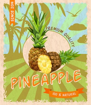 Retro plakat der ananas