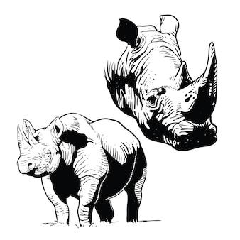 Rhinos linie kunst vektor